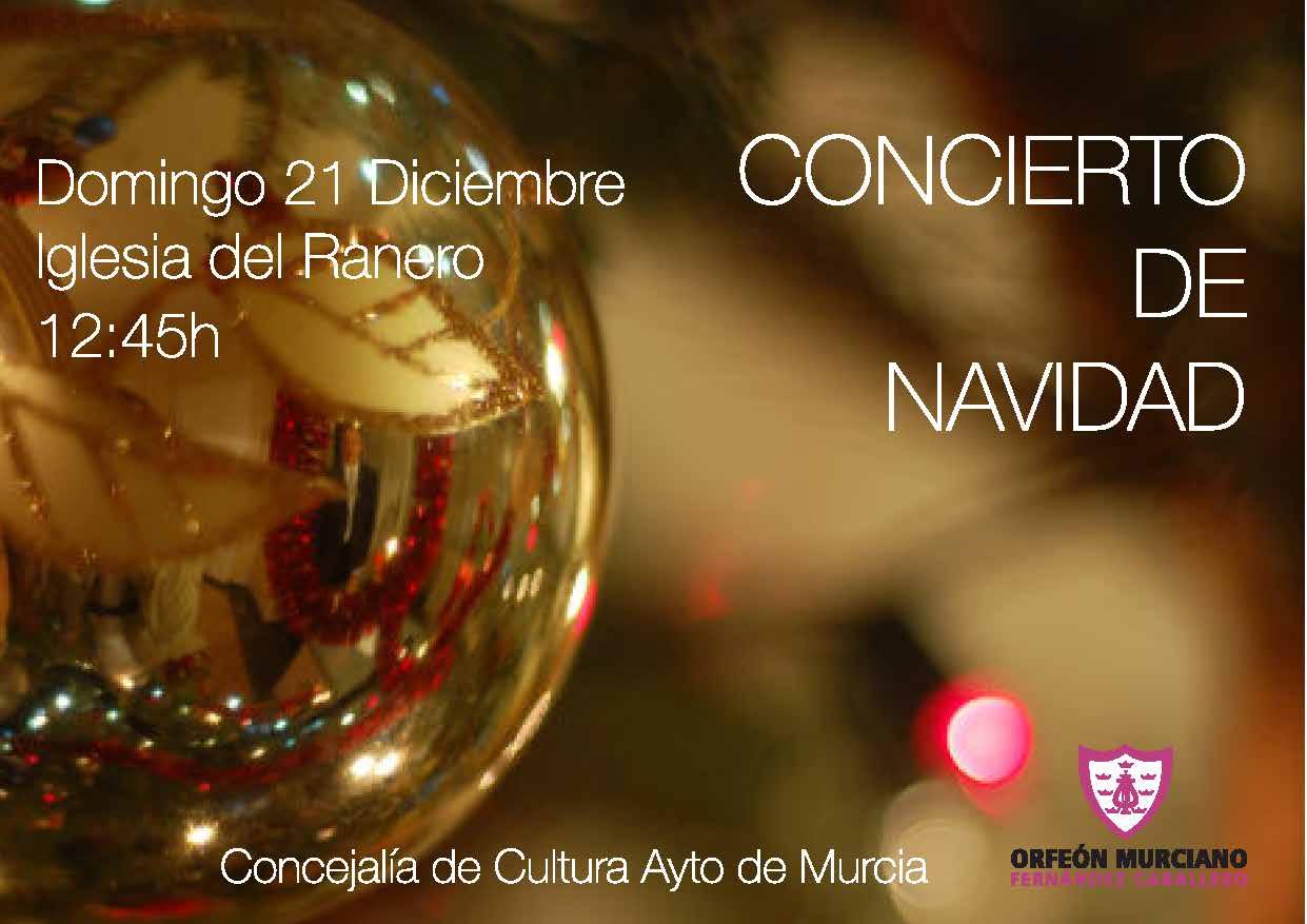 publicación concierto navidad 2014