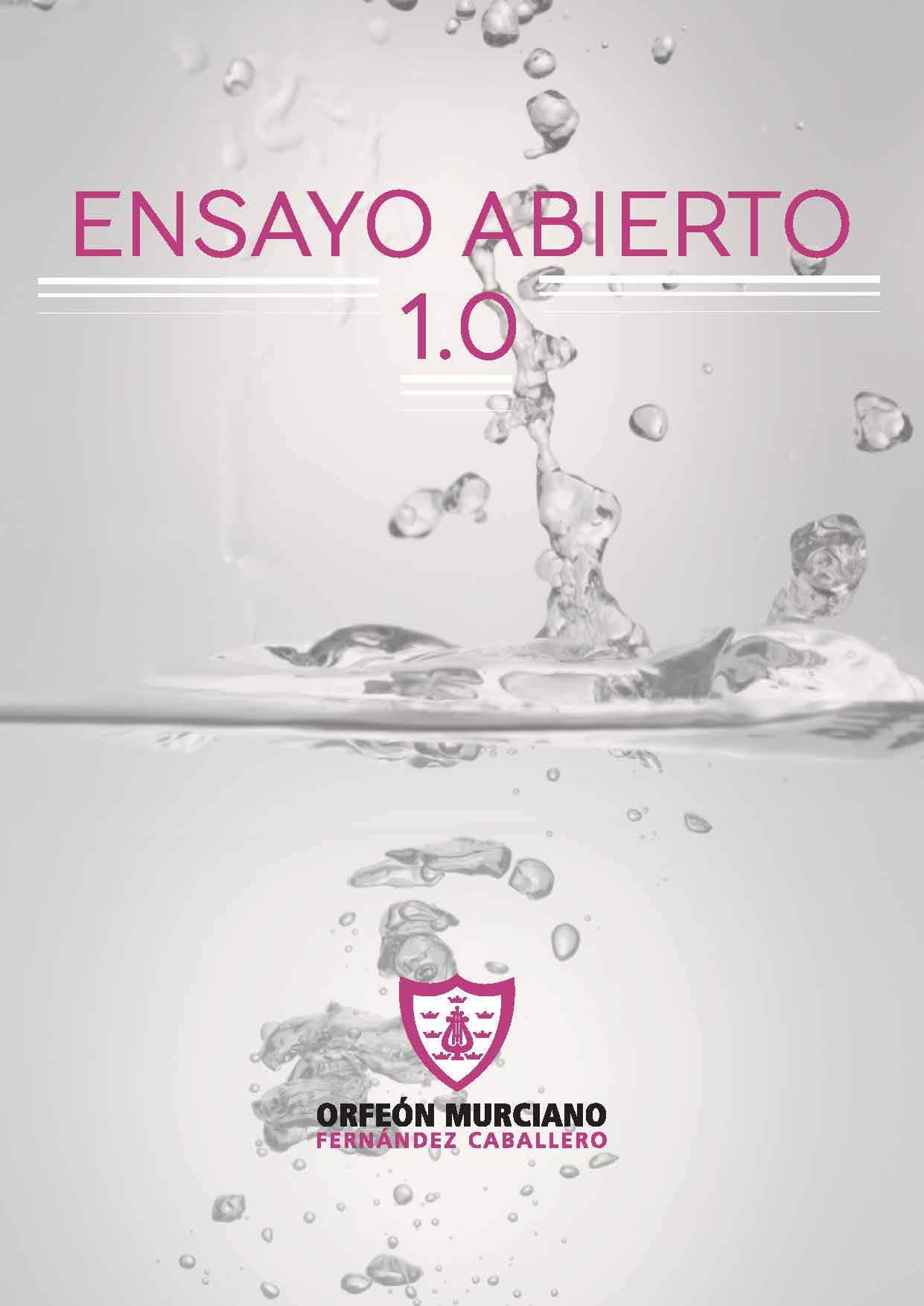 ENSAYO ABIERTO 1.0