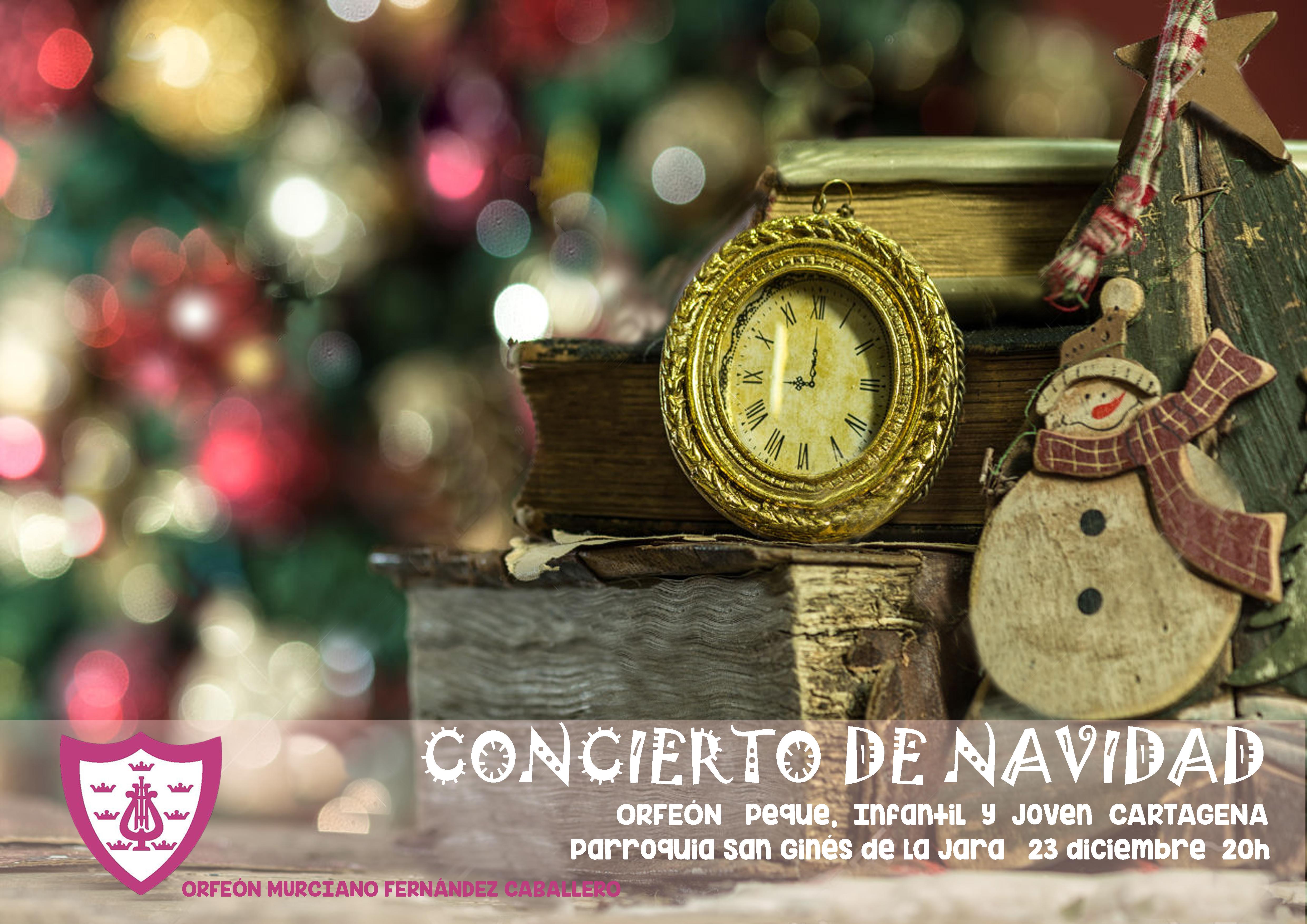 concierto-cartagena-23-11-2016-copia